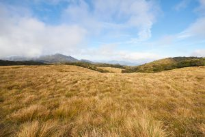 Sri Lanka Horton Plains