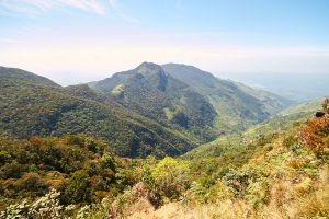 Horton Plains Sri Lanka